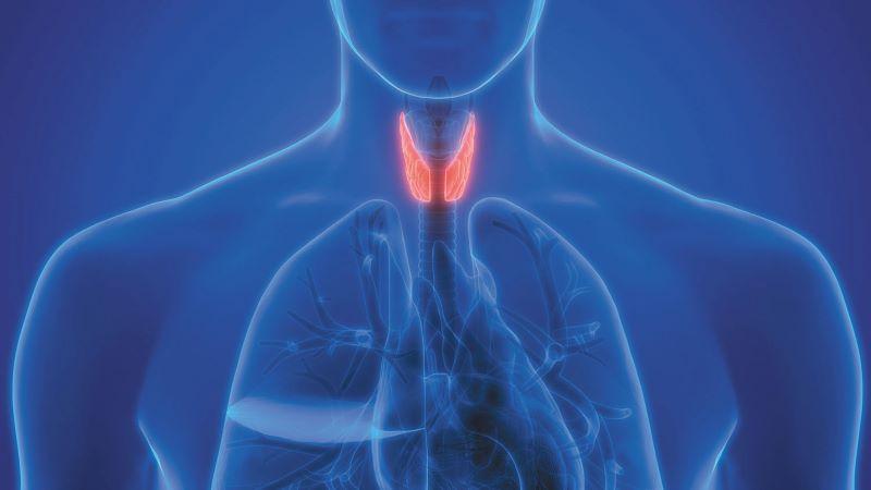 Hereditary Thyroid Cancer